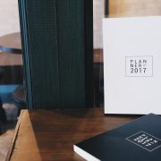 2017 Simple Planner Pro